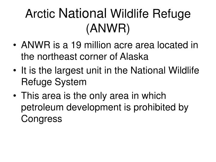 arctic national wildlife refuge anwr n.