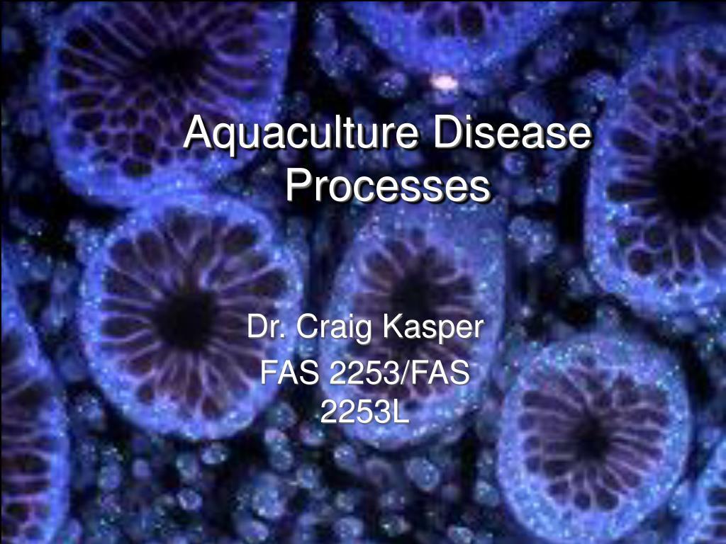 aquaculture disease processes l.