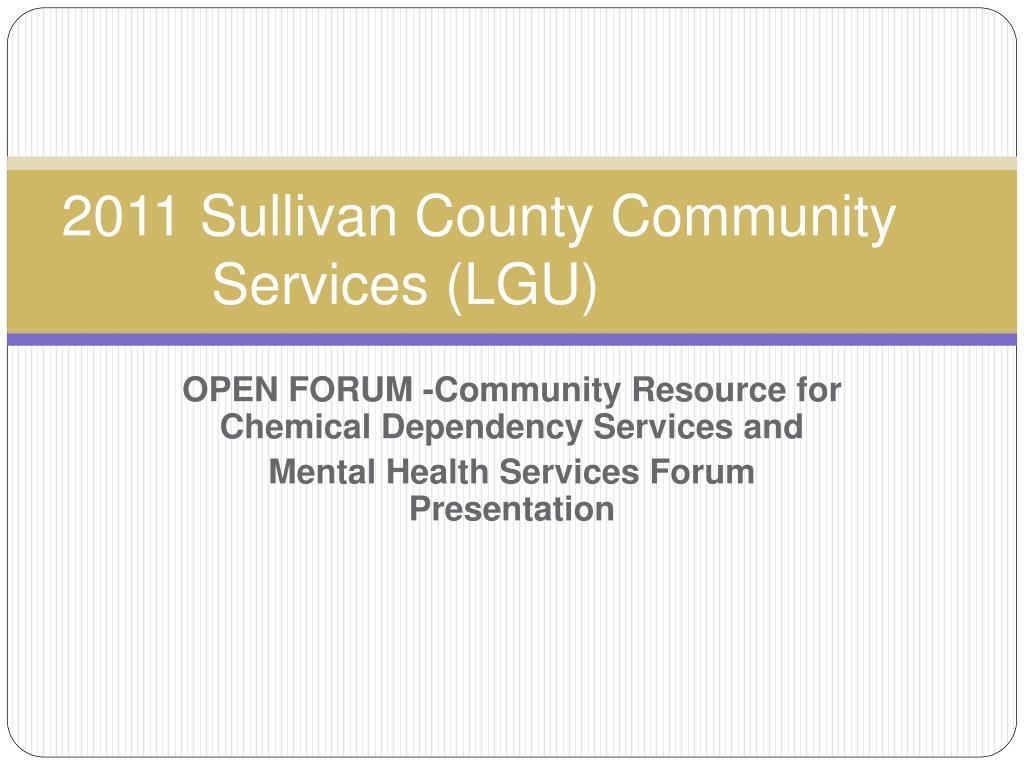 2011 sullivan county community services lgu l.