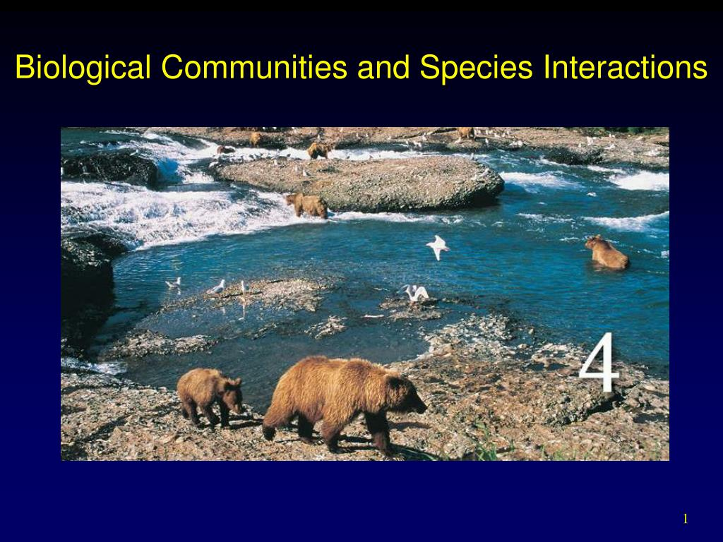 biological communities and species interactions l.