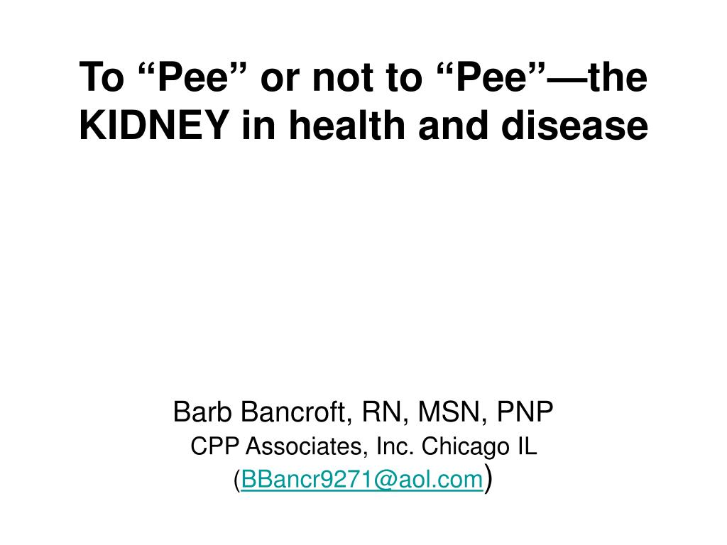 to pee or not to pee the kidney in health and disease l.