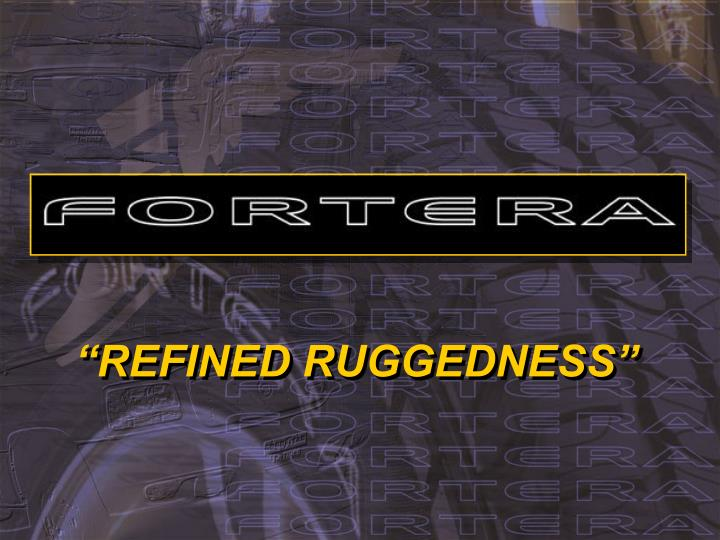 refined ruggedness n.