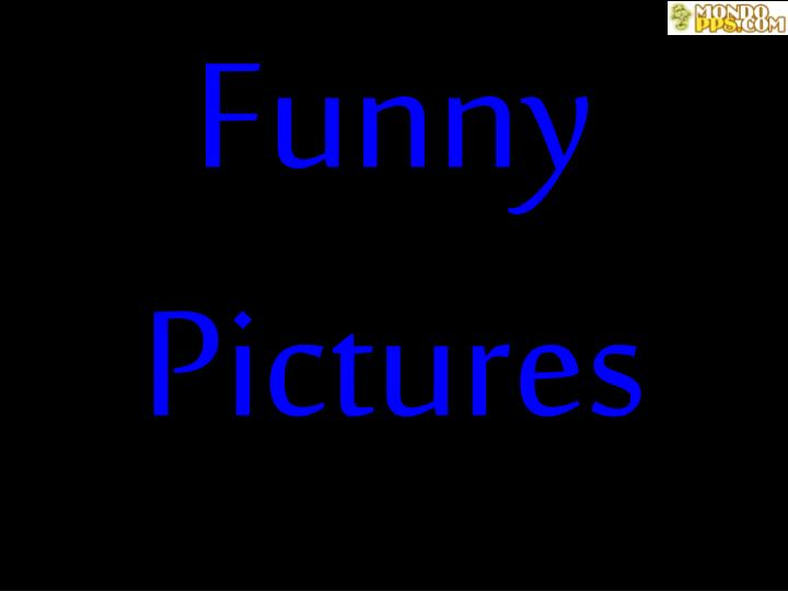 funny pictures n.