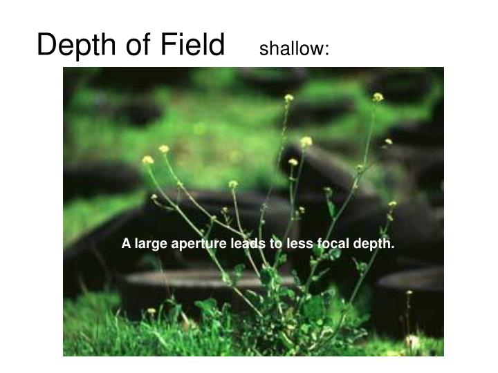 depth of field shallow n.