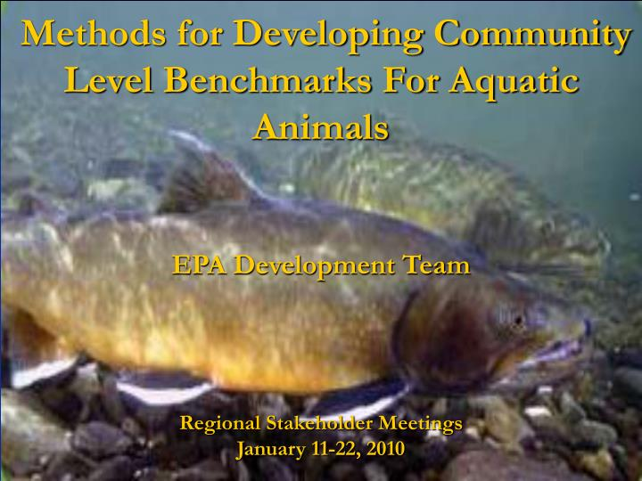 methods for developing community level benchmarks for aquatic animals n.