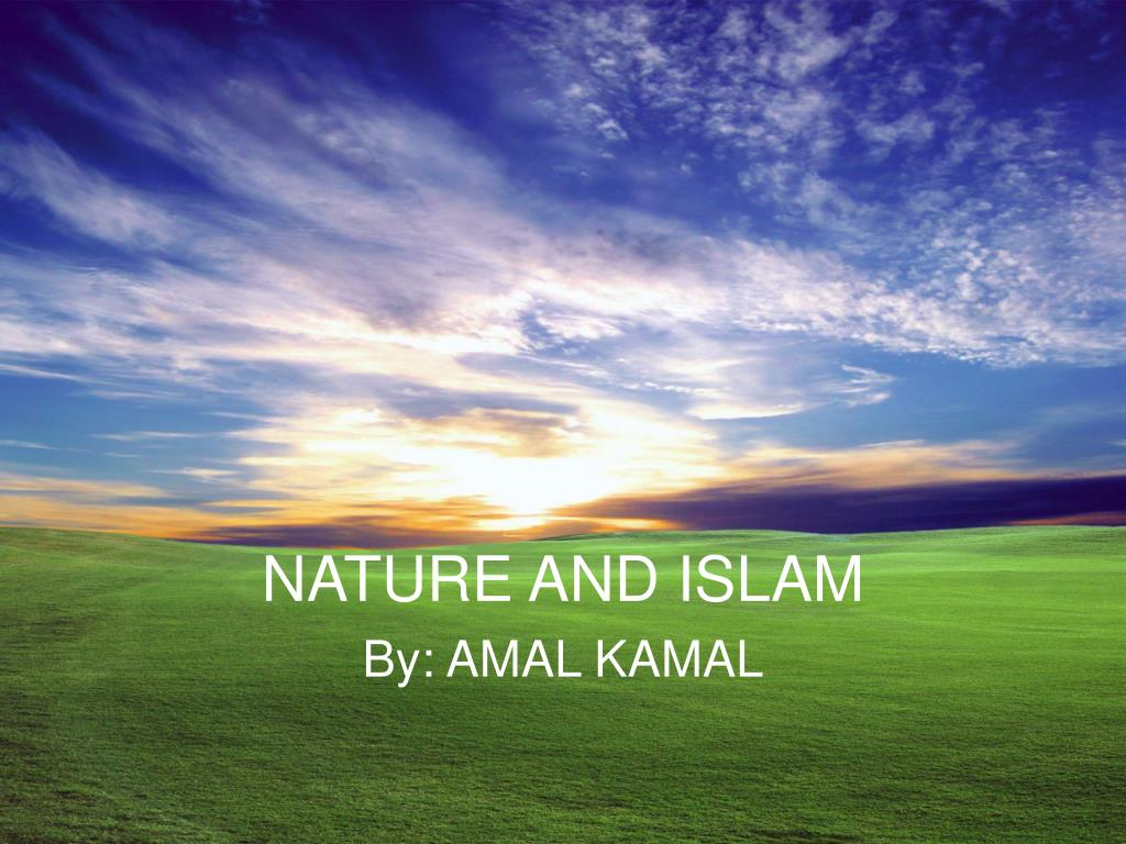 nature and islam l.