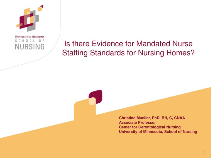 is there evidence for mandated nurse staffing standards for nursing homes n.