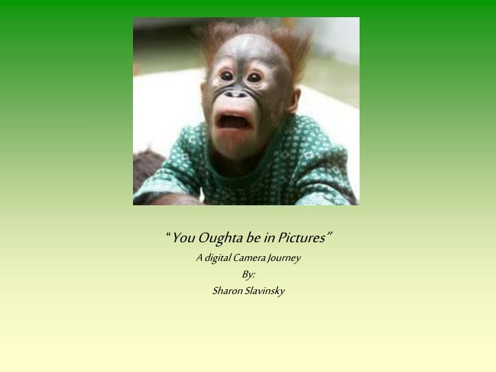 you oughta be in pictures a digital camera journey by sharon slavinsky n.
