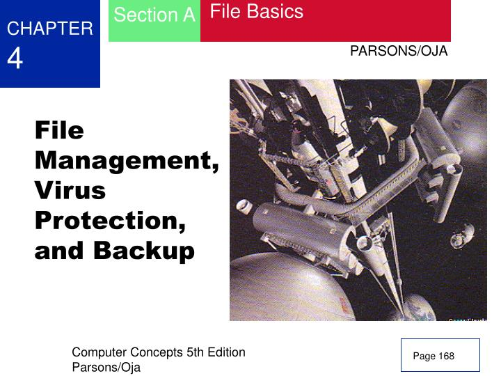 file management virus protection and backup n.