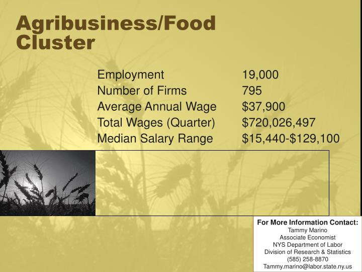 agribusiness food cluster n.