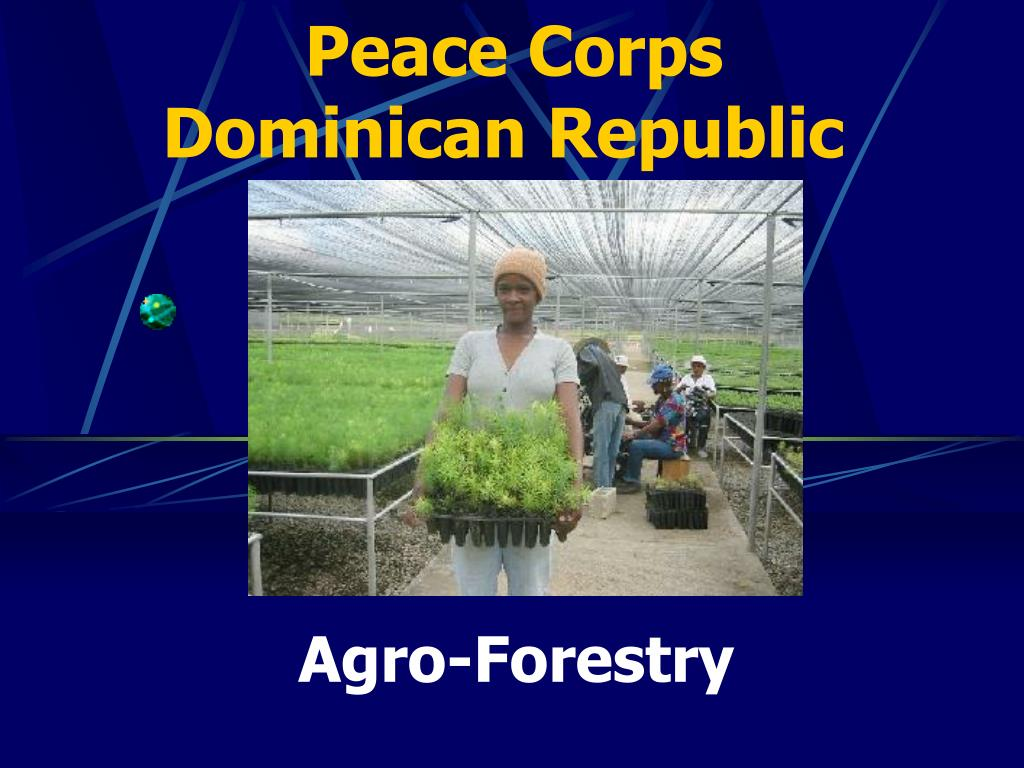 peace corps dominican republic l.