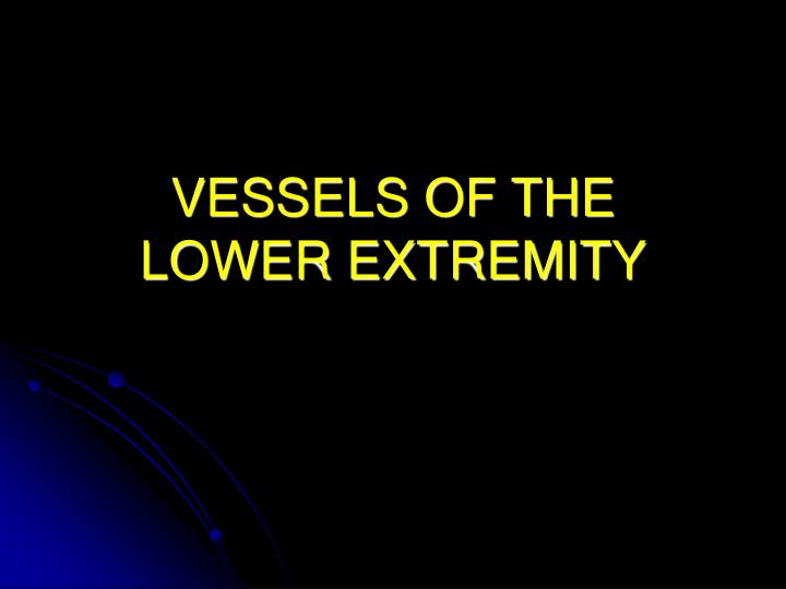 vessels of the lower extremity n.