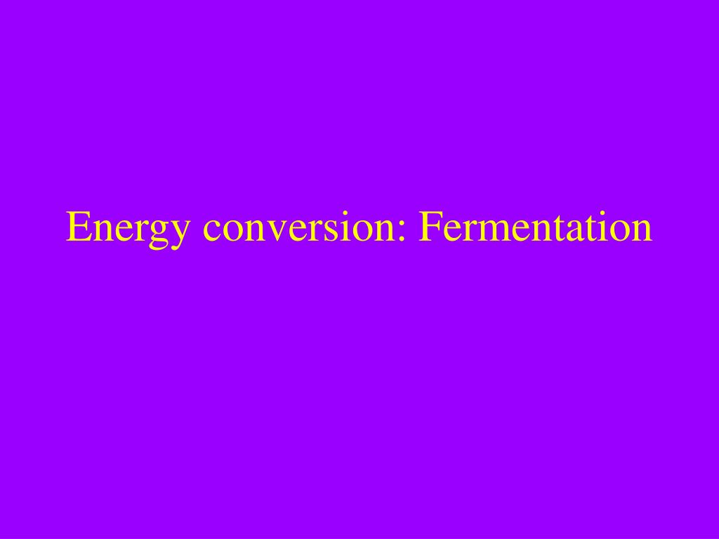 energy conversion fermentation l.