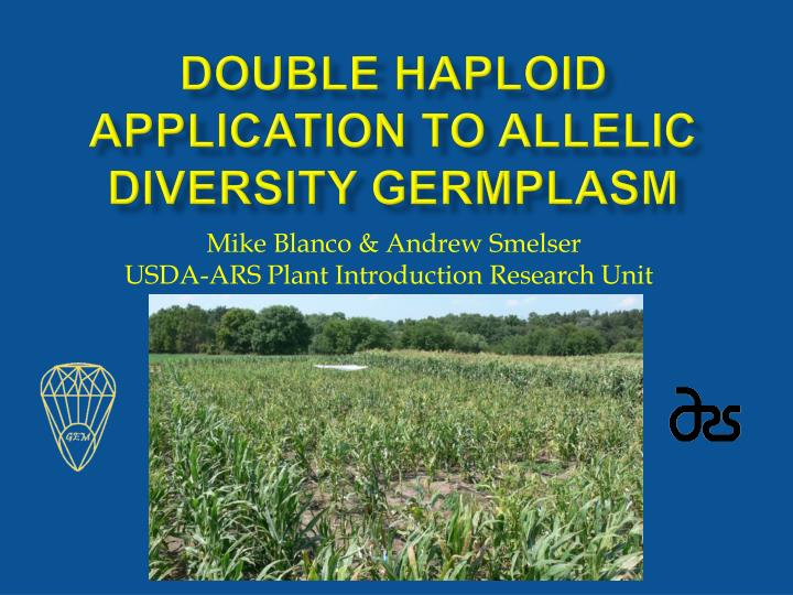 double haploid application to allelic diversity germplasm n.