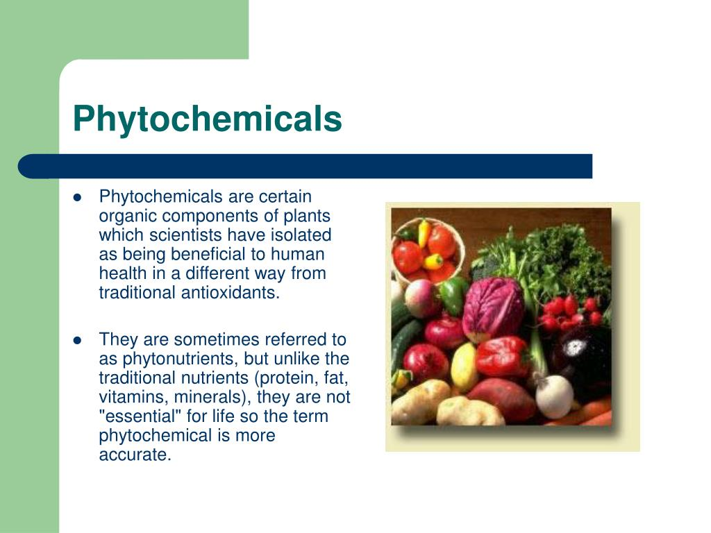 phytochemicals l.