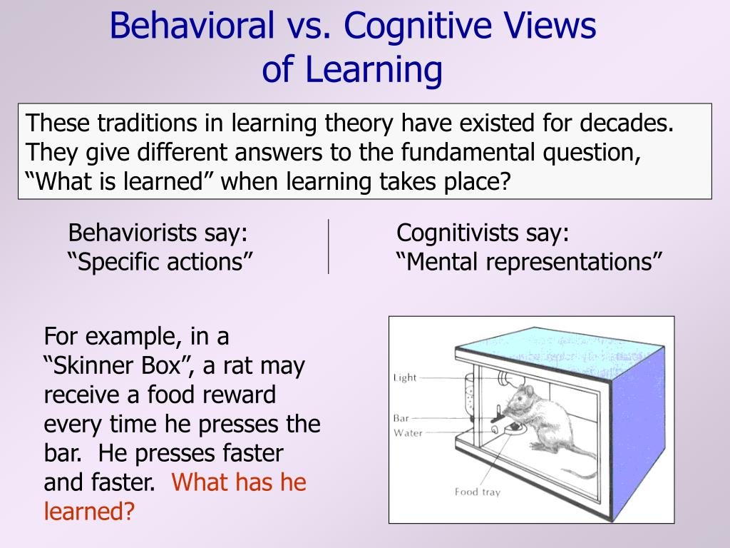 behavioral vs cognitive views of learning l.