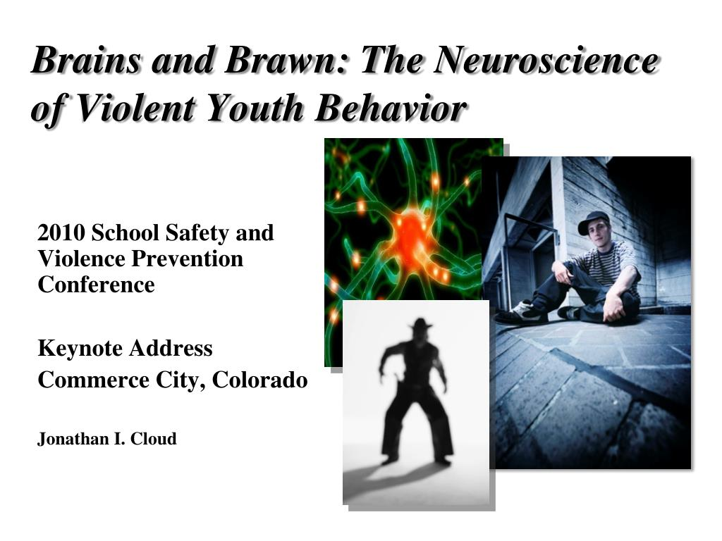 brains and brawn the neuroscience of violent youth behavior l.