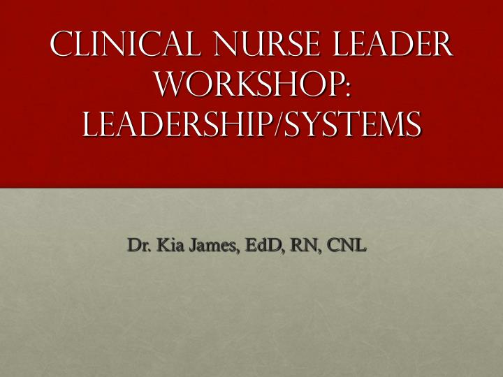 clinical nurse leader workshop leadership systems n.